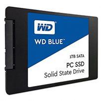 WesternDigital WD Blue WDS100T1B0A